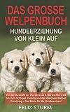 DAS GROSSE WELPEN BUCH - HUNDEERZIEHUNG VON KLEIN AUF: Von der Auswahl der Hunderasse & des Züchters bis hin zum richtigen Training und der effektiven Welpen Erziehung – Das Beste für die Hundewelpen!