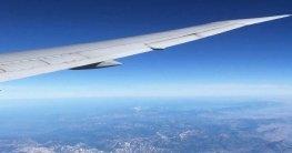 Fliegen-mit-Hund - Hund im Flugzeug-Was kostet ein Hund im Flugzeug?-Flugbox für große Hunde-Flugbox für kleine Hunde