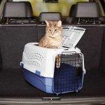 Katzentransportboxen-aus-Plastik