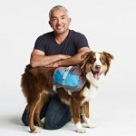 Cesar Millan Dog Backpack - 9